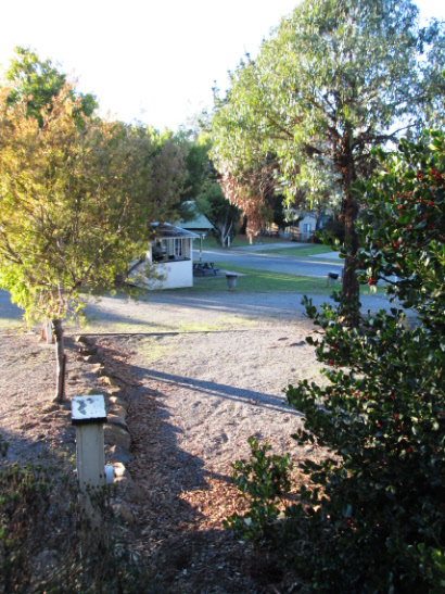 Powered caravan and camper sites minutes from Launceston