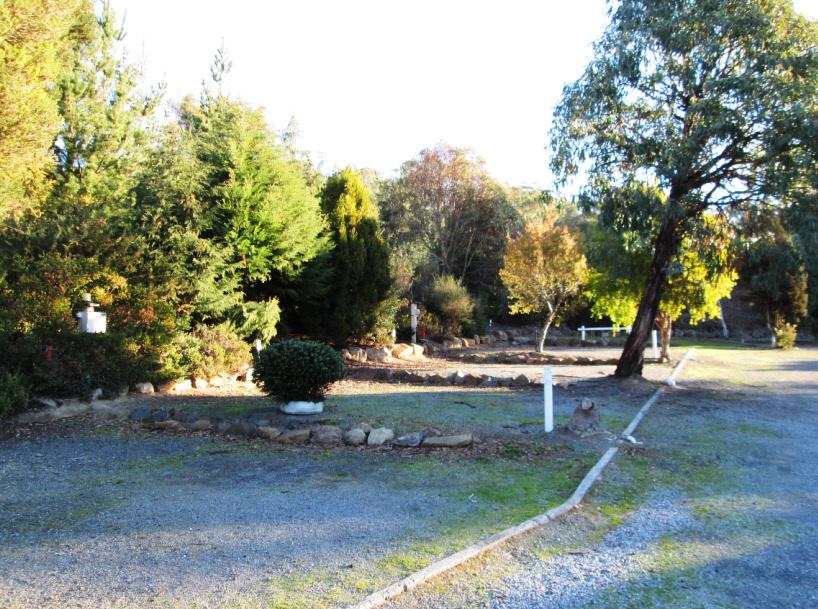 Powered caravan / camper sites - Launceston Holiday Park